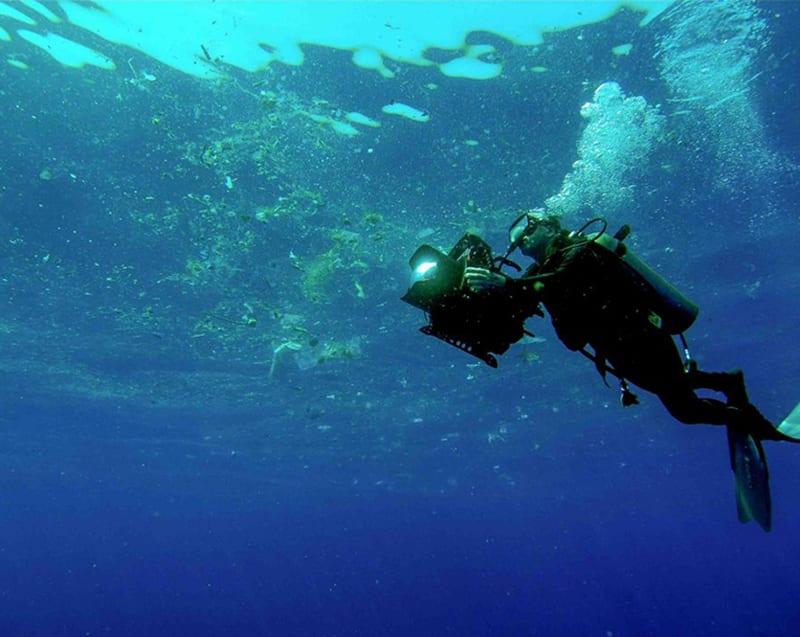 Plastic Oceans Charity Commitment